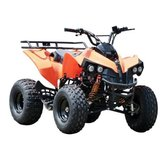 ATV 125cc ReneGade 2w4